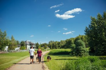 couple-walking-dogs-in-green-space